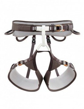Harness Aquila (various sizes)