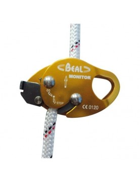 Mobile Fall Arrest Device Monitor