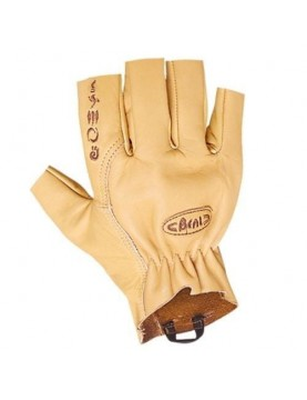 Gloves Assure (various sizes)
